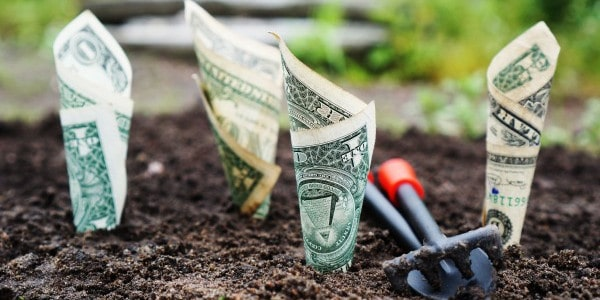 benefits of time management - money growing in the ground