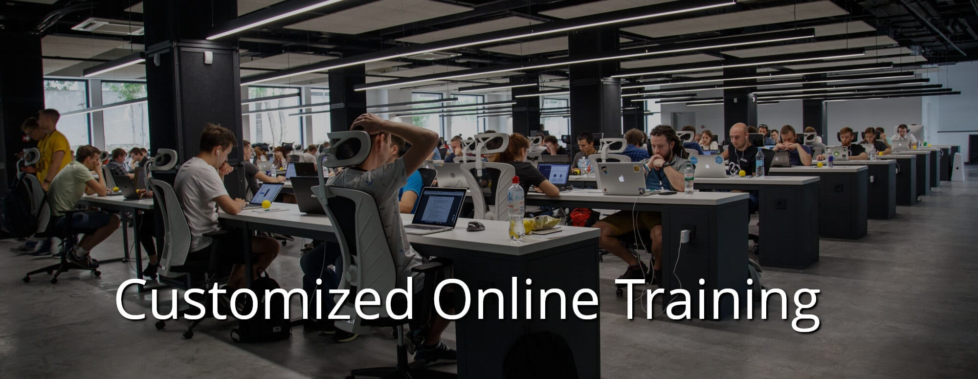 Customized Online Training - The Exceptional Skills
